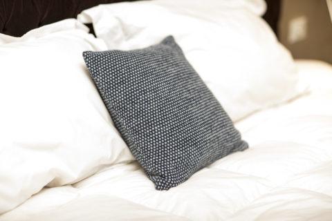 Xena 100% Baby Llama Pillowcase